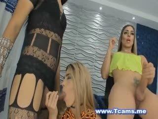 Shemale Threesome Sucking Their Cocks