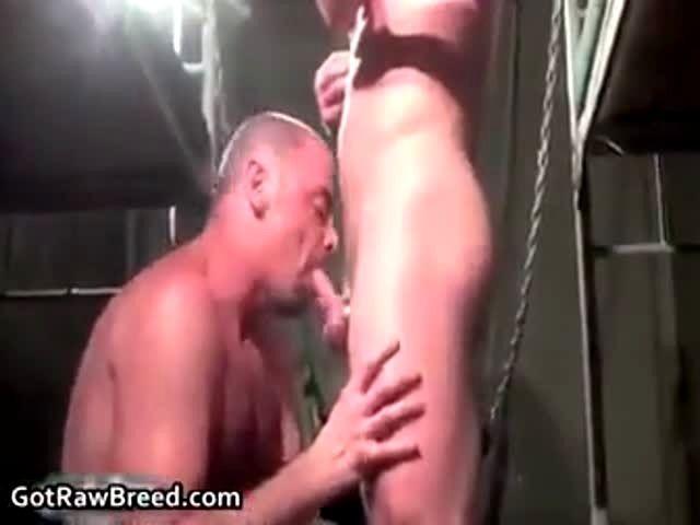 free porn corner/tranny