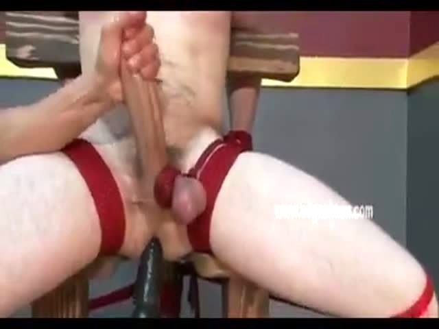 Gay Toy Boy Sits On A Special Chair That Allows Toy To -6336